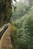 Irrigation canal levada Royalty Free Stock Photography