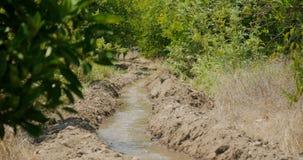 Irrigation canal in orange garden. Irrigation canal supplied for agriculture in rural areas, orange gardens in Turkey, Antalya stock video footage