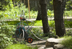 Irrigation cart in garden Stock Photography