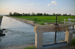 Irrigation channel near the rice fields royalty free stock images