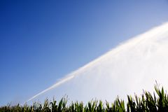 Irrigation of the corn Royalty Free Stock Photography