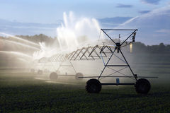 Irrigation of crops. Crop irrigation system spraying a field Royalty Free Stock Photography