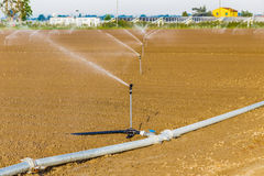 Irrigation of cultivated fields. With rotating sprayers near photovoltaic panels royalty free stock photos