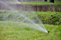 Irrigation de jardin Photos libres de droits
