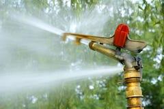 Irrigation de stationnement images libres de droits