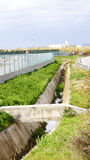 Irrigation ditch Royalty Free Stock Photo