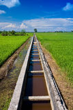 Irrigation drain at a paddy field on a sunny day. Landscape shot of an Irrigation drain at a paddy field on a sunny day with blue sky and white clouds stock image