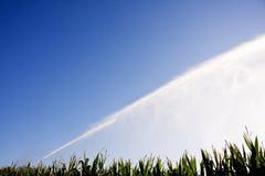 Irrigation du maïs Photographie stock libre de droits