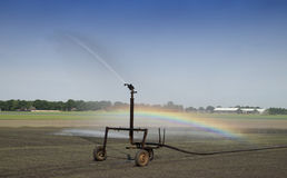 Irrigation at the farm field Royalty Free Stock Image