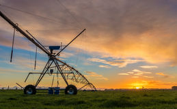 Irrigation Farming New Zealand Susnet royalty free stock images