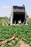 Irrigation farmland Royalty Free Stock Photos