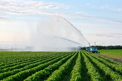 Irrigation of farmland Royalty Free Stock Photos