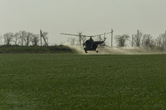 Irrigation with fertilizer from a helicopter. 
