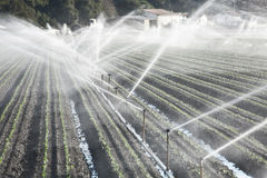 Irrigation in a Field Royalty Free Stock Image