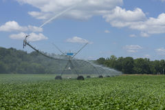 Irrigation on Field of Soybeans Stock Image