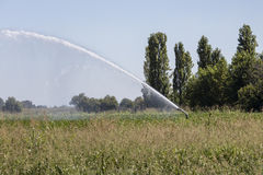 Irrigation fields Royalty Free Stock Image
