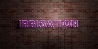 IRRIGATION - fluorescent Neon tube Sign on brickwork - Front view - 3D rendered royalty free stock picture. Can be used for online banner ads and direct Stock Photography
