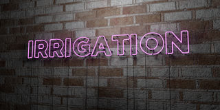 IRRIGATION - Glowing Neon Sign on stonework wall - 3D rendered royalty free stock illustration. Can be used for online banner ads and direct mailers Stock Image
