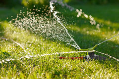 Irrigation of green grass Royalty Free Stock Photo