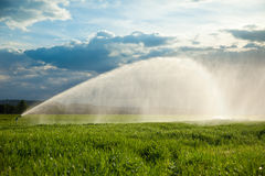 Irrigation of a green wheat field. Against a dramatic sky at sunset Royalty Free Stock Images