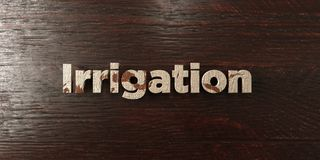 Irrigation - grungy wooden headline on Maple  - 3D rendered royalty free stock image. This image can be used for an online website banner ad or a print Royalty Free Stock Photos