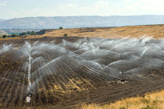 Irrigation in Israel Royalty Free Stock Photography