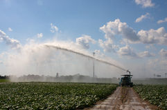 Irrigation Mayhem. Power irrigation of fields in the Everglades stock images