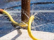 Irrigation method Stock Photography