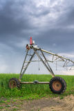 Irrigation in oilseed rape field on cloudy day. Sprinkler irrigation system in oilseed rape field on cloudy day Stock Photo