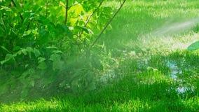 Irrigation par aspiration de jardin banque de vidéos