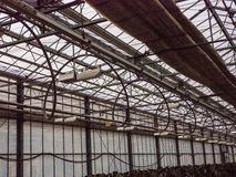 Irrigation pipe line. Irrigation pipe line for seedling in greenhouse Royalty Free Stock Image