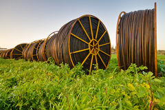 Irrigation pipes. Rolled drip irrigation pipes  in the field Stock Images