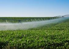 Irrigation Pivot Stock Image