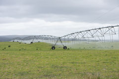 Irrigation by Pivot sprinkler on grass field Stock Image