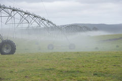 Irrigation by Pivot sprinkler on misty field Stock Photo