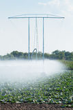 Irrigation pivot watering Stock Image