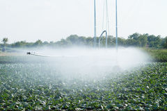 Irrigation pivot watering Royalty Free Stock Image