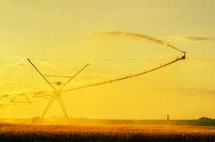 Irrigation pivot on wheat field at summer sunset Stock Photography