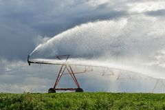 Irrigation pivot on the wheat field Royalty Free Stock Photos