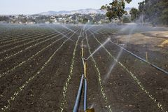 Irrigation plant Stock Images