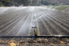 Irrigation plant Royalty Free Stock Photography