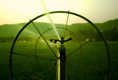 Irrigation Sprinkler Stock Images