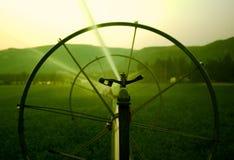 Irrigation Sprinkler Stock Images