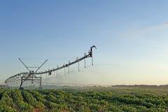 Irrigation sprinkler Royalty Free Stock Image