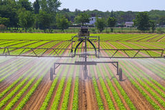 Irrigation sprinkler Royalty Free Stock Photography