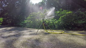 Irrigation sprinkler stock video footage