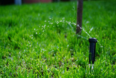 Irrigation sprinkler watering grass Royalty Free Stock Photography