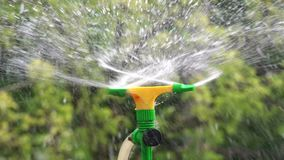 Irrigation Sprinkler Watering Vegetable Garden stock video