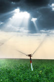 Irrigation sprinklers Stock Images