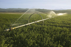Irrigation sprinklers Stock Photos